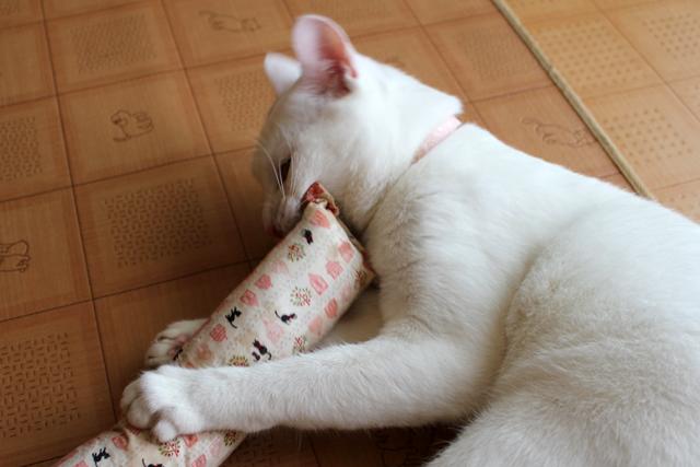猫堂の手作りキッカー