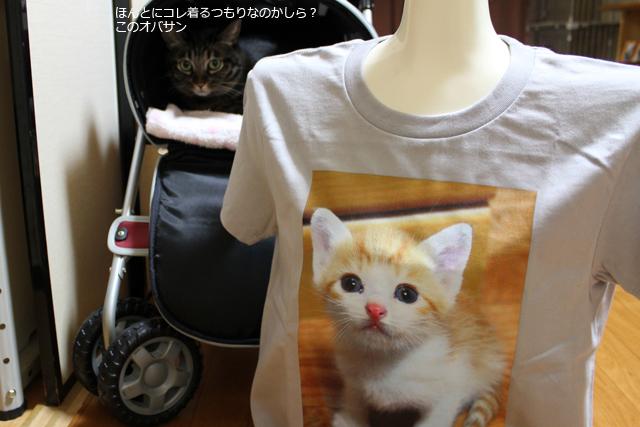 猫堂のオリジナルプリントTシャツ