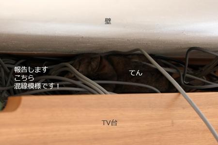 壁とTV台の間ですよ(^◇^;)